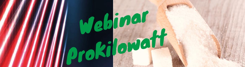 Grande successo dei webinar ProKilowatt